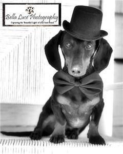 Bella Luce Photography