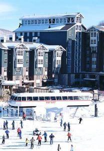 Marriott's MountainSide