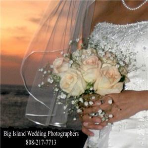 Bill Waldman Photography