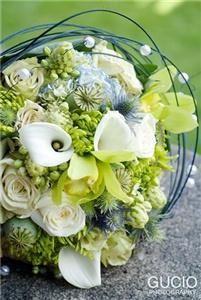 Queen's Park Florist
