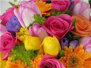 Andrea K.Grist Floral Designs