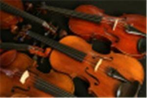 The Vail Valley String Quartet & Trio LLC