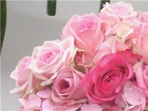 Tributes Floral Company