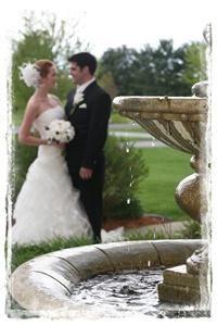 Together Wedding Photography & Video Ltd