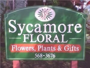 Sycamore Floral