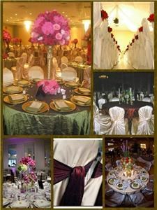 All Occasions Chair Covers and Linen Rentals