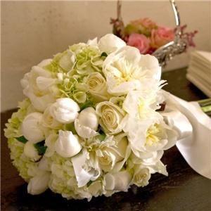 Septemb floral  fine ar s & pher Studiosotography