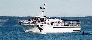 Mystic Sea Charters