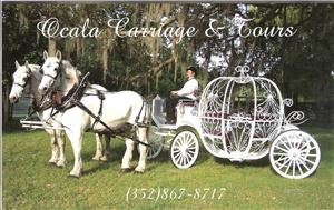 Ocala Carriage & Tours - Tampa
