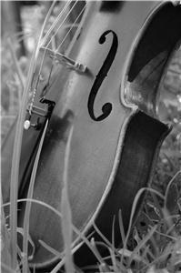 Jacksonville Strings - Saint Augustine
