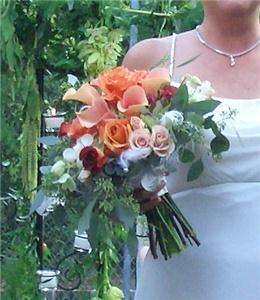 Colony Bay Florist