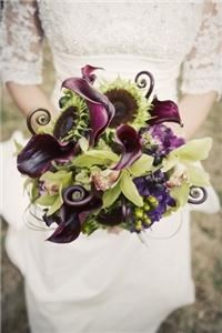 The Wedding Designer *Susan Foy