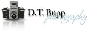 D.T. Bupp Photography - Reading