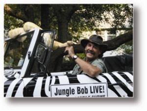 Jungle Bob LIVE!