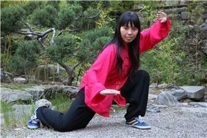 Qi Dragon Healing Center  Taichi