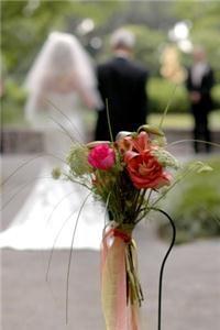 Weddings At Pawleys
