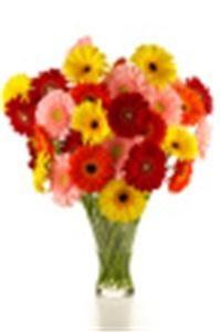 Penny's Florist Shop Inc.