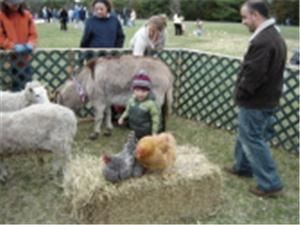 Traveling Petting Farm Zoo and Ponies for Parties