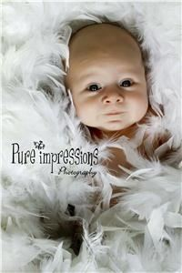 Pure Impressions Photography