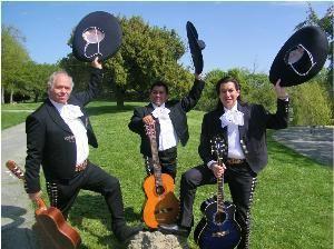 Mariachi Trio Estrellas De Oro... Mariachi Band