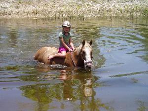 Jupiter Equestrian Center, LLC