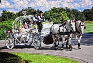 HighHorse Carriage Rides, Inc.
