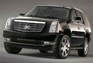 Luxury Brand Limousine