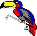 Toucan Golf