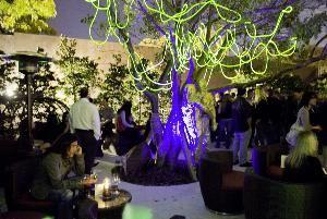 Cafeina Wynwood Garden