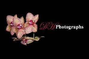 DH Photographs