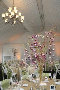 Jeanil Wedding & Event Designs