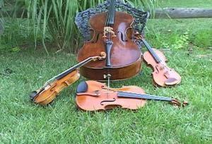 String Celebrations