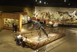 Kirtland Hall of Prehistoric Life
