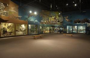 Sears Hall of Human Ecology