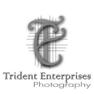 Trident Enterprises