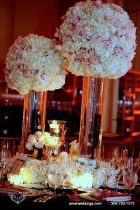 Amar Weddings