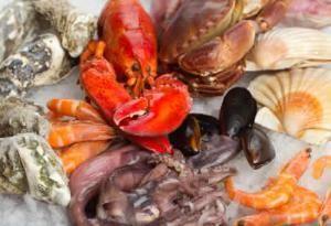 Castaway Coastal Catering