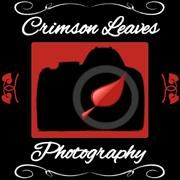 Crimson Leaves Photography
