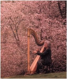 Gwyneth Evans Harp Music For Special Occasions