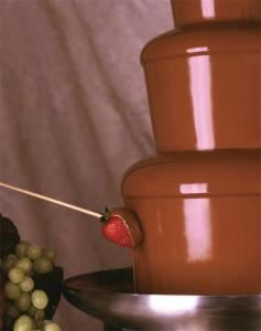 A Chocolate Celebration chocolate fountains