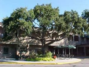 Best Western - Sea Island Inn