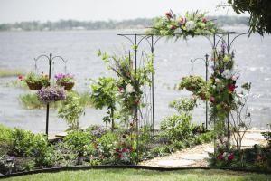 Miss Cindy's Gardens
