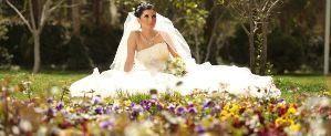 Toto Wedding