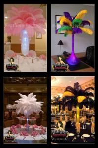 Feathers By Angel-Ostrich Feather Centerpieces - Chicago