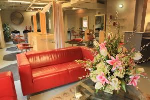 Circe Of Alexandria Salon Spa