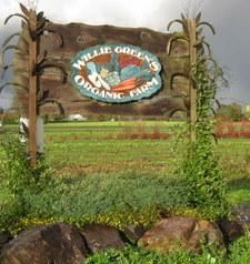 Willie Green's Farms
