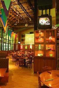 9 Amigos Restaurant/Patio