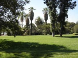 Garden Terrace Lawn