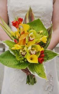 Elephant Flowers Floral Design