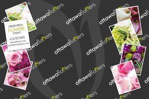 Ottawa's Premiere Florist™